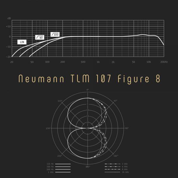 Neumann TLM 107 Figure 8 Freq