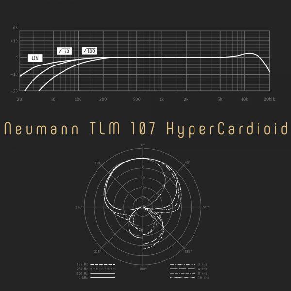 Neumann TLM 107 HyperCardioid Freq