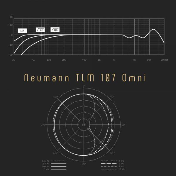 Neumann TLM 107 Omni Freq